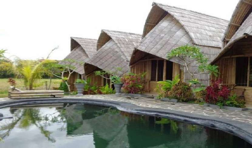Search availability for the best bed and breakfasts in Ubud